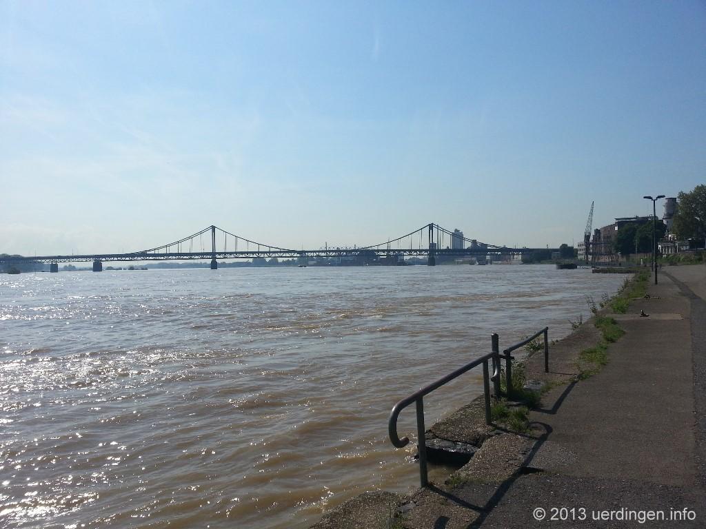 Rhein Hochwasser 2013